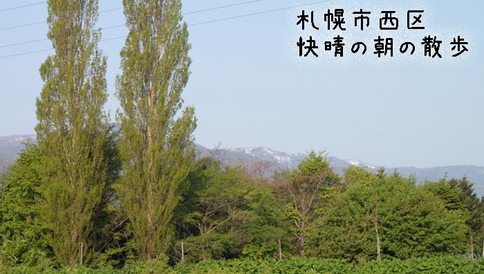20110526-001.jpg
