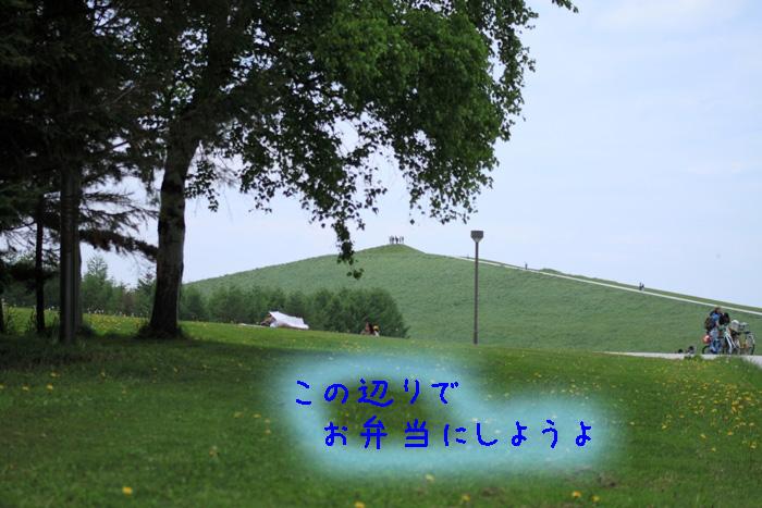 20110605-003.jpg