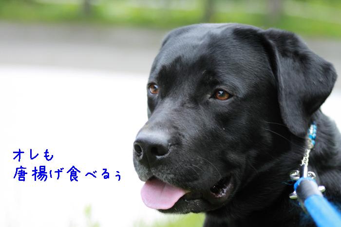 20110605-004.jpg