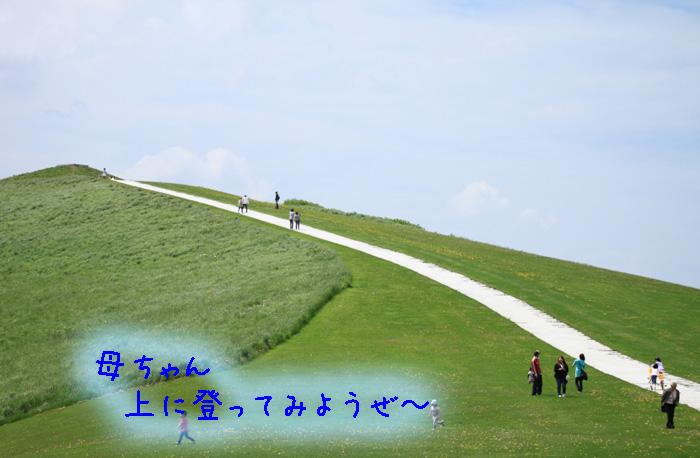 20110605-008.jpg