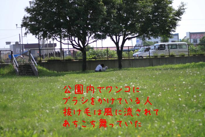 20110611-003.jpg