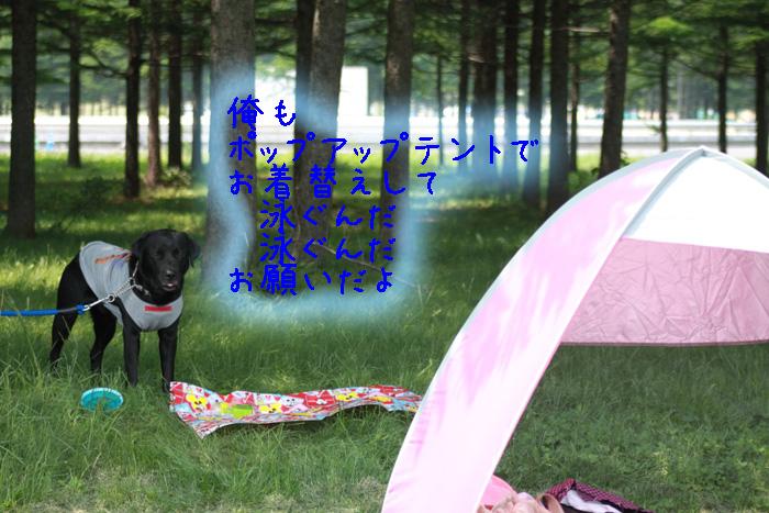 20110619-003.jpg