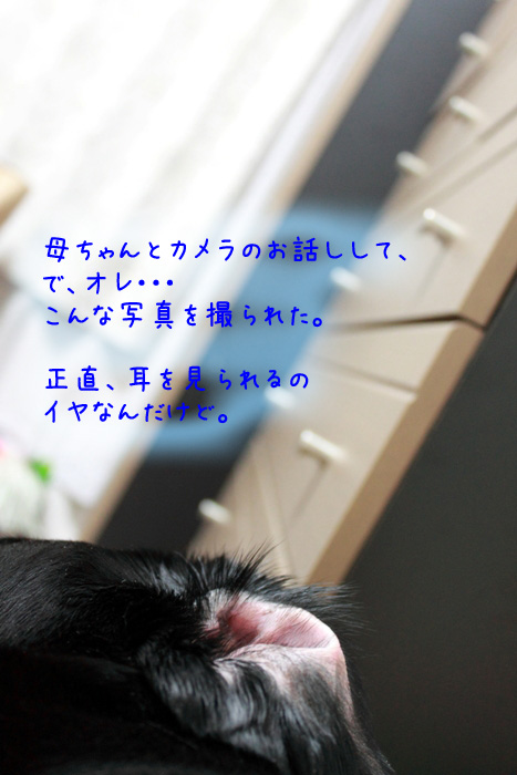 20110702-M02.jpg
