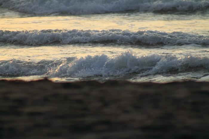 20110813-007.jpg