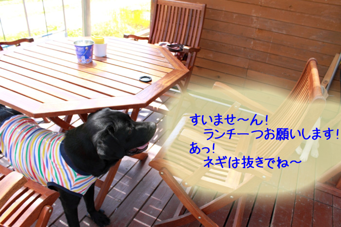 20110827-010.jpg