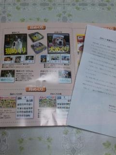 DVC00125_20100917220709.jpg