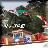 運動会2011⑤