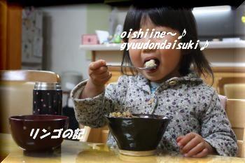 陶器in牛丼