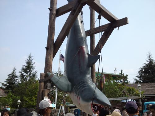 ディズニ-サメ