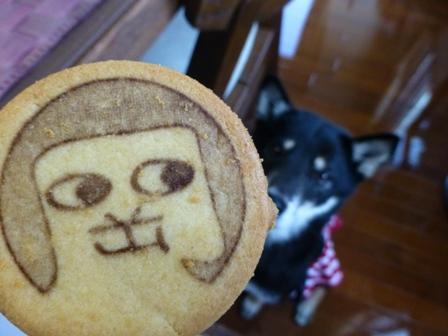 オカザえもんクッキー10