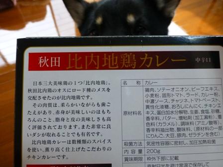 比内地鶏カレー2