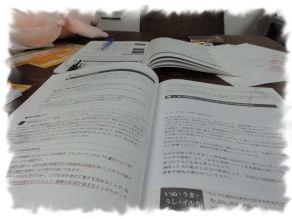 DSC05699 養成