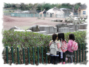 DSC06788 zoo