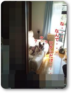 DSC_2078.jpg
