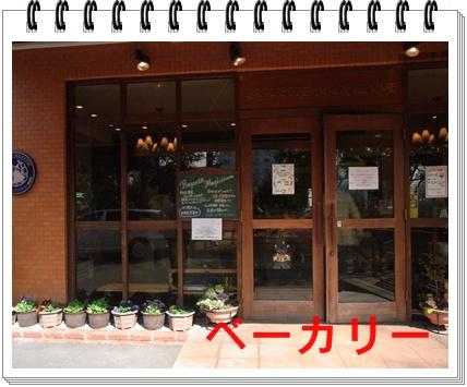 RIMG8467.jpg
