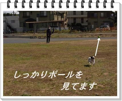 RIMG8770.jpg
