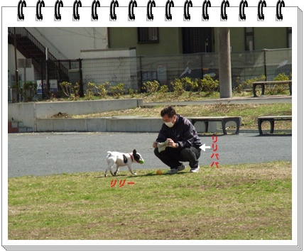RIMG8771.jpg