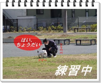 RIMG8772.jpg