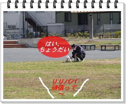 RIMG8774.jpg