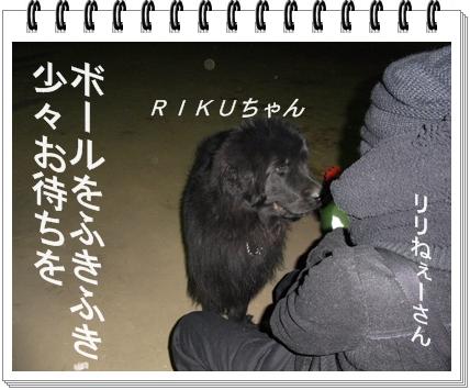 RIMG9116.jpg