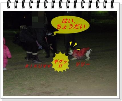 RIMG9118.jpg