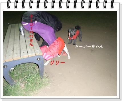 RIMG9124.jpg