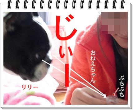 RIMG9209.jpg