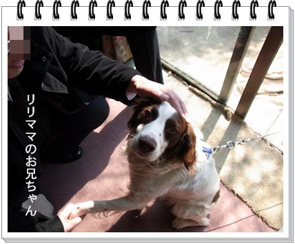 RIMG9348.jpg