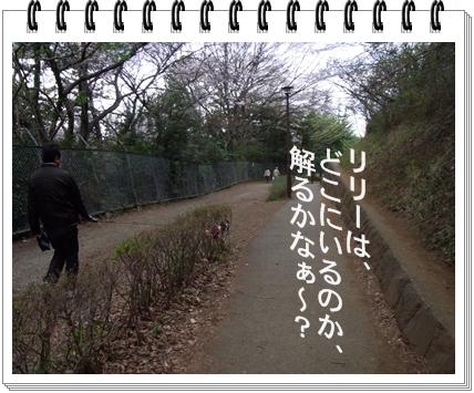 RIMG9679.jpg