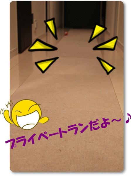 a5_20110912222624.jpg
