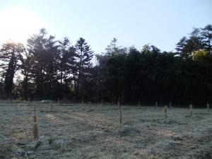 柿園convert_20110121191014