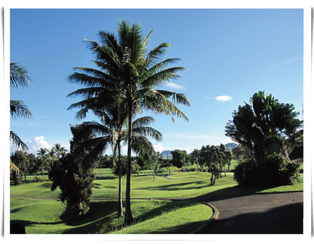 hawaii20131020_01.jpg