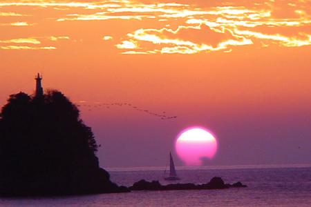 久礼湾海岸線からの雲とヨットとウミウと双名島