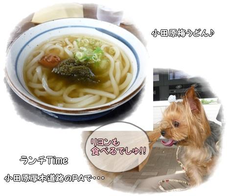 伊豆①-ランチ