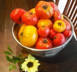 tomato1_convert_20100815212106.jpg