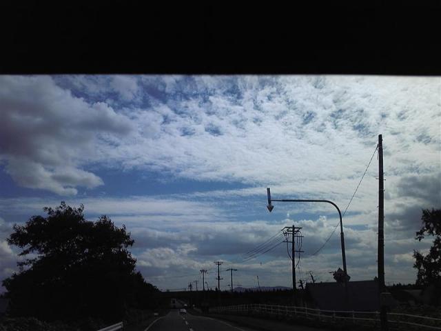 SH370250_R.jpg