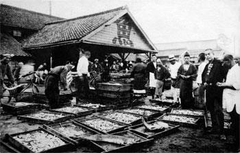 大浜魚市場の活況