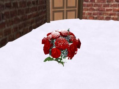 きれいなバラ