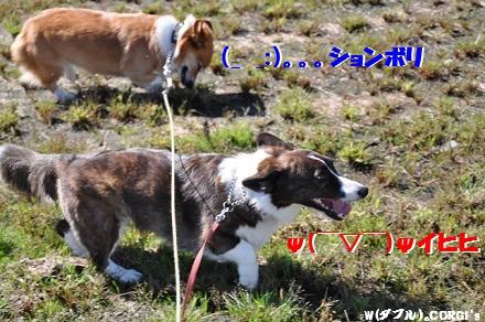 2010101105.jpg