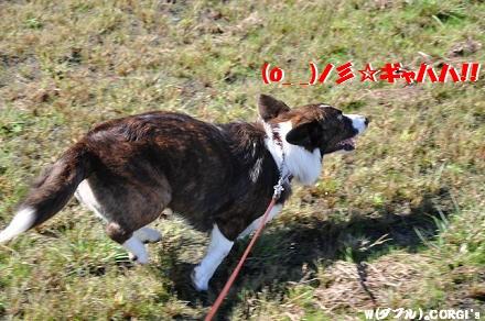 2010101106.jpg