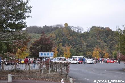 2010111501.jpg