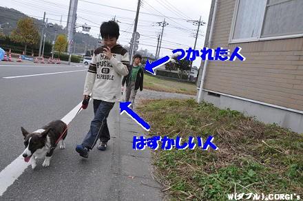 2010111612.jpg