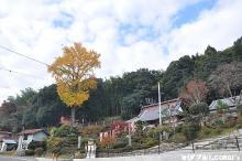 2010112408.jpg