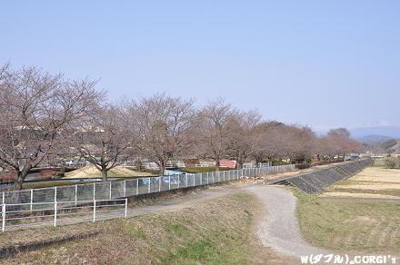 2011041004.jpg
