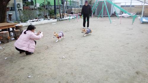公園でひとっ走り~