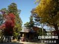 P1150359白笹神社