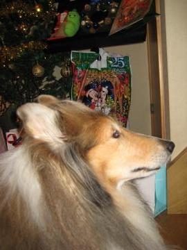IMG_3548_2013クリスマス