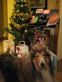 IMG_3542_2013クリスマス