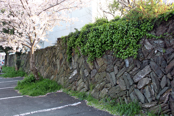 二宮家住宅石塀(国有形文化財)