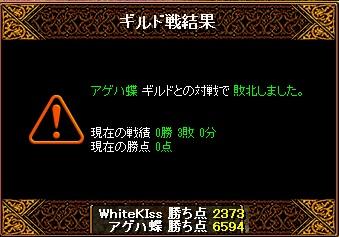 11.06 白キスvsアゲハ蝶 結果